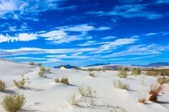 Along White Sands Natural Trail