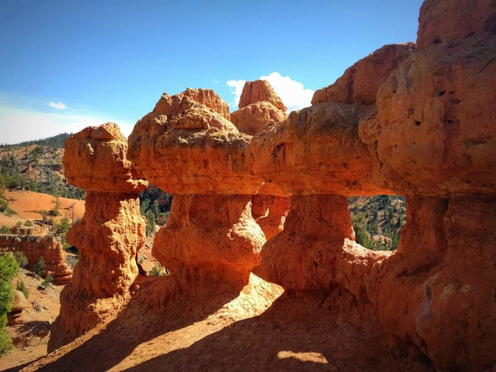 Red Canyon Dixie National Forest The Adventures Of