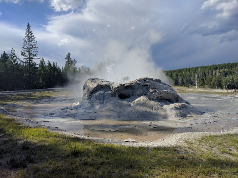 grotto geyser yellowstone