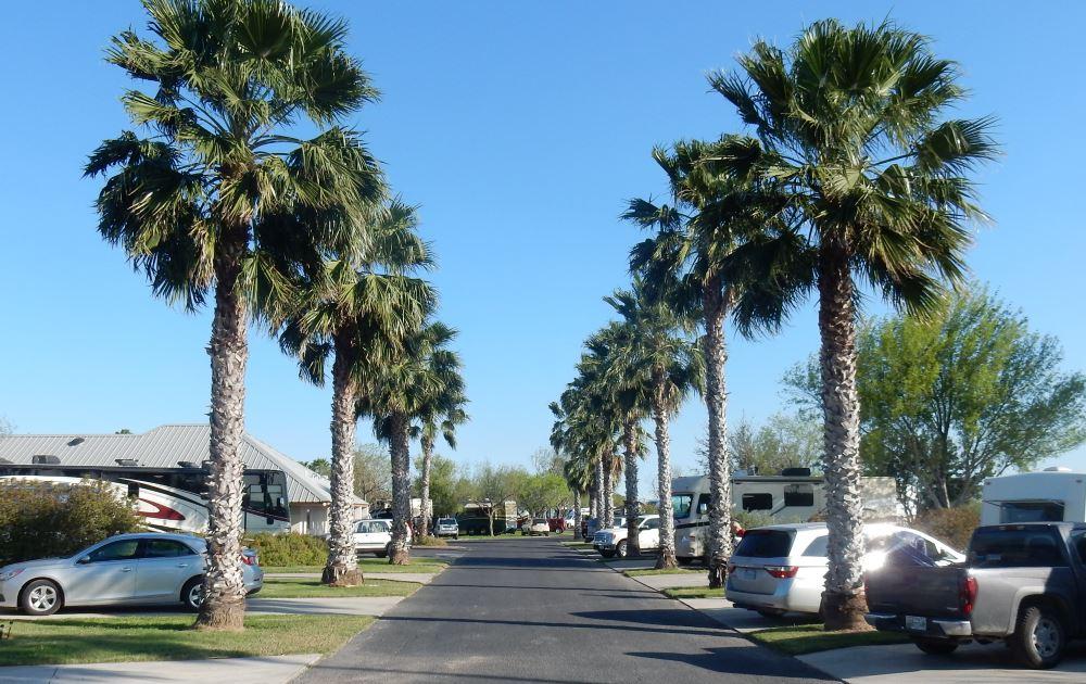 bentsen palm village rv resort mission tx  adventures  trail hitch