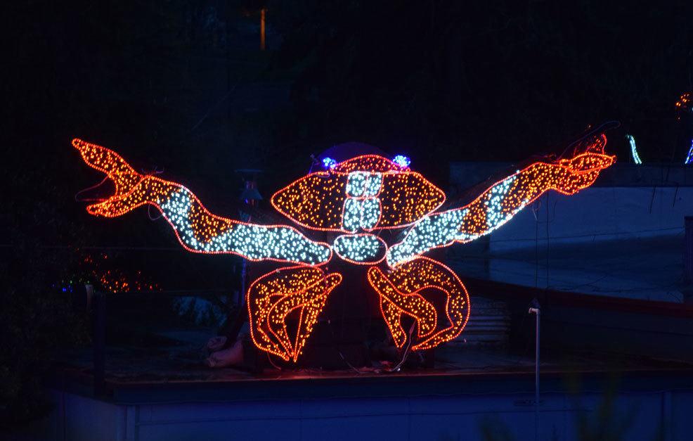 Crabby Lights