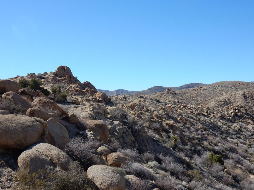 View from Mastodon Peak