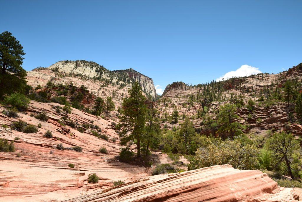 Zion Plateau Formations