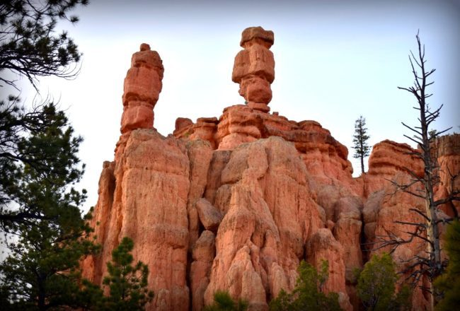 Hoodoo Red Canyon