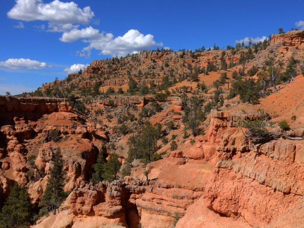 Vermillion Cliffs along Arches Trail