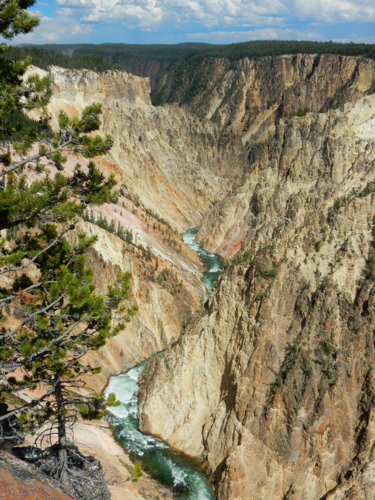 Canyon-Yellowstone