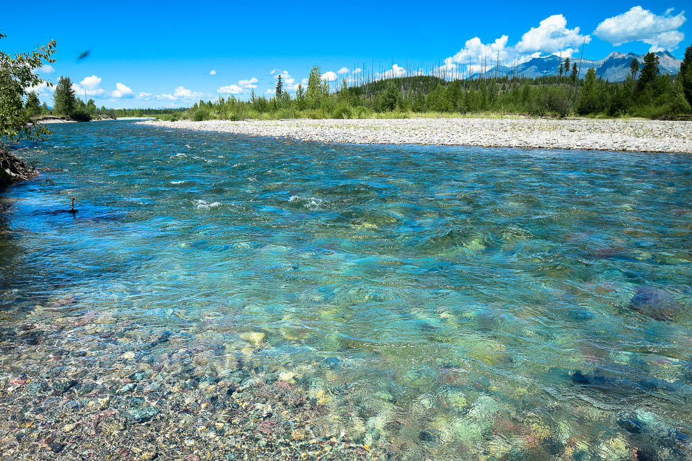 North Fork Flathead River