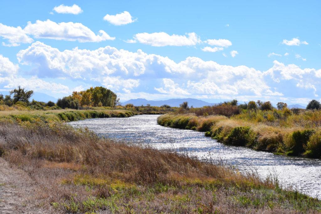 Alamosa Rio Grande River Trail