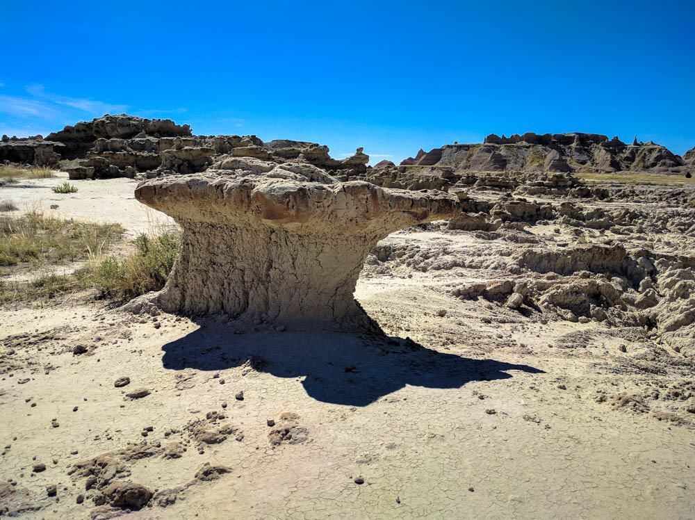 Badlands mushroom