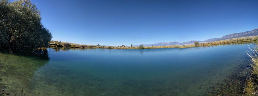 Blanca Wetlands Pond
